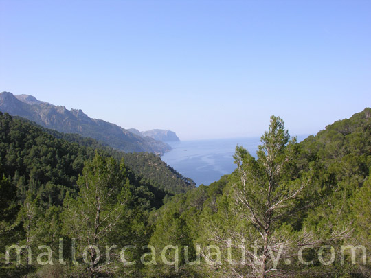 estellencs_mallorca_02