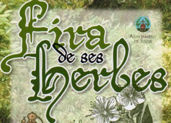 Fires_ses_herbes